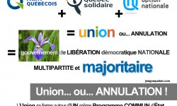 UNION démocrate MULTIPARTITE